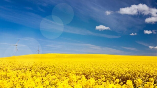 How to Resolve a Spiritual Drought: The Answer Lies Within Her Experience (Part 2)