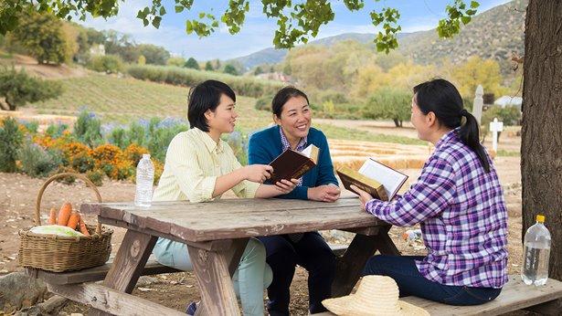 Christian testimony, spiritual life, Church life